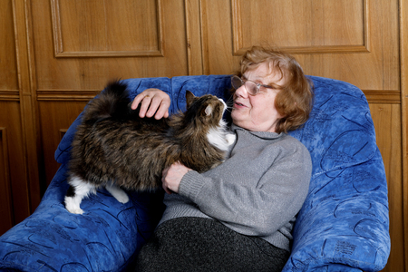 fondle: The grandmother with a cat in house conditions