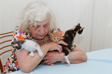 octogenarian: The grandmother holding three  kittens Stock Photo