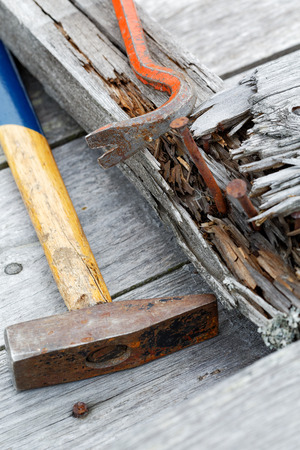 holdfast: claw hammer and rusty nails on the old boards