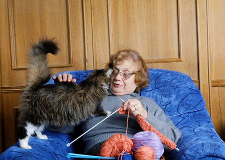 octogenarian: The old woman sits in an armchair and stroke a cat Stock Photo