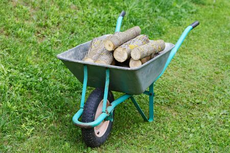 hand truck: hand truck with firewood on the green grass Stock Photo