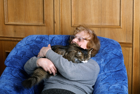 asleep chair: old woman asleep in a chair in an embrace with a cat Stock Photo