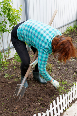 dug: Woman digging the ground with a shovel on a close-up of a garden