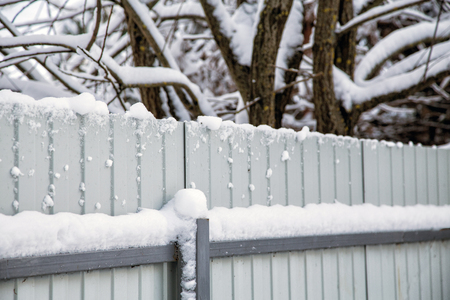 fence and trees snow-covered in cold winter