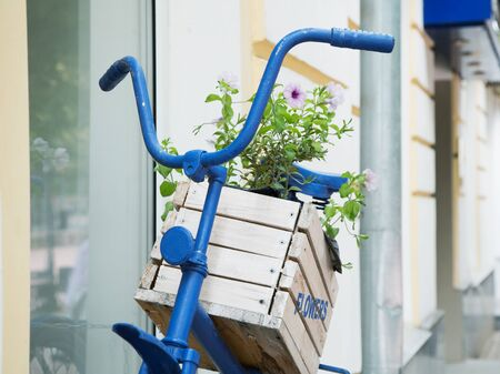 wooden box with flowers on an old blue bike city street 写真素材 - 132392839