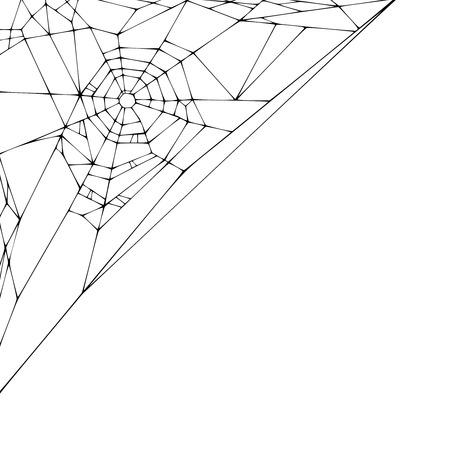 Spider web on a white background. Vector illustration Illustration