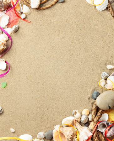 Sea shells with sand, rope as background