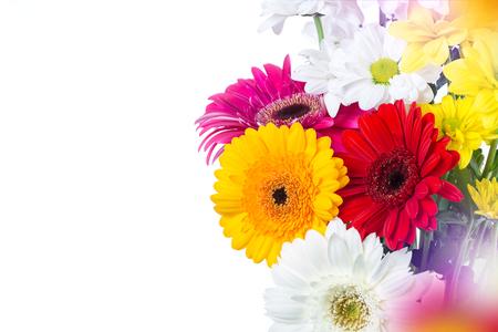 bouquet of gerbera on a white background Фото со стока