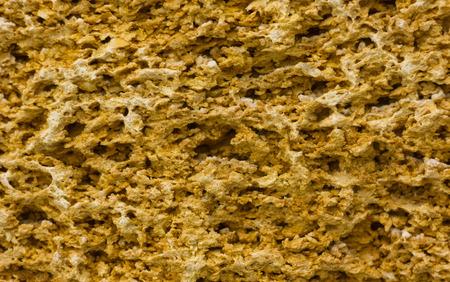 coquina: Textura amarilla de la piedra coquina para el fondo