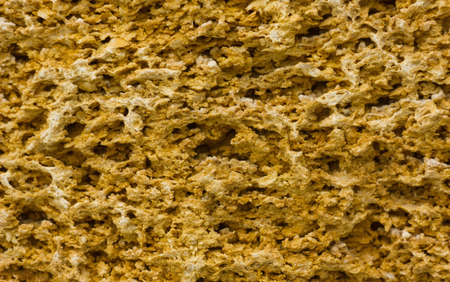 coquina: yellow texture of coquina stone for background Stock Photo