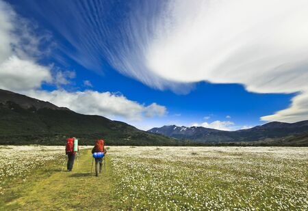 lenticular: two hikers going in patagonia mountains with beautiful huge lenticular clouds and blue sky with field full of white flowers Stock Photo