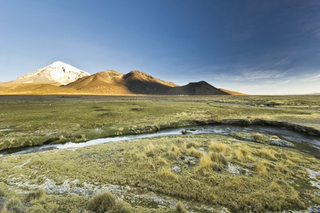 sajama: sunset at altitude 4400m above snow-covered volcano Sajama in Bolivia with bushes of grass and river flowing