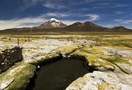 sajama: hot springs near snow-covered volcano Sajama in Bolivia with bushes of grass Stock Photo