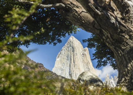 fitz-roy tower in patagonia Through the leaves