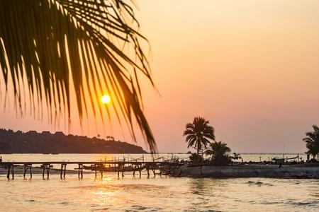 ocean seashore with palm at sunrise in Samui island