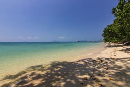 blue ocean beach and shadow of palm on water in phangan island