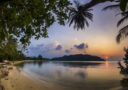 ocean seashore with palm at sunrise in Phangan island 写真素材