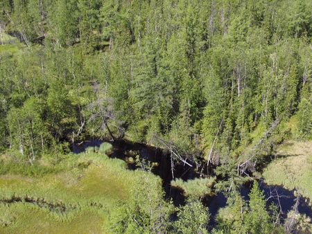 Aerial view on siberian taiga  landscape from a helicopter  Stock Photo - 200527