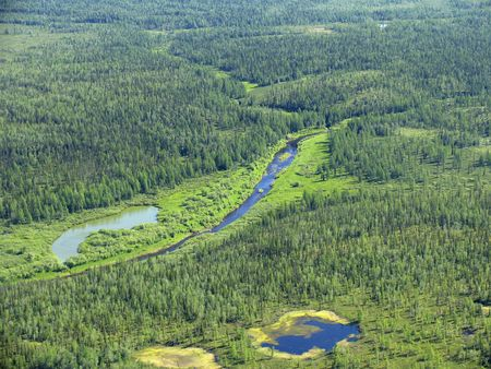 Aerial view on siberian taiga  landscape from a helicopter  Stock Photo - 200528