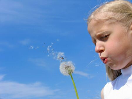 Little girl blows on dandelion Stock Photo - 214718