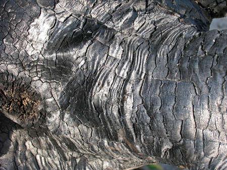 Black charcoal texture photo