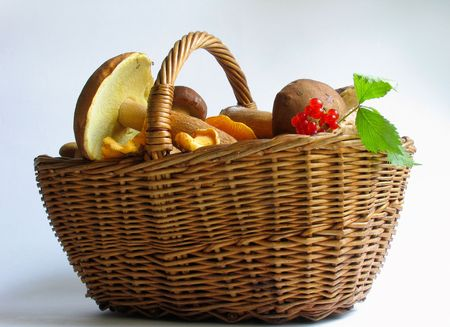 The gifts of nature: Basket full of mushrooms and berries Stock Photo - 318884