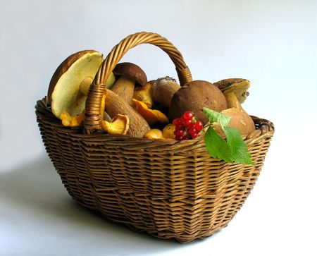 bacca: The gifts of nature: Basket full of mushrooms and berries