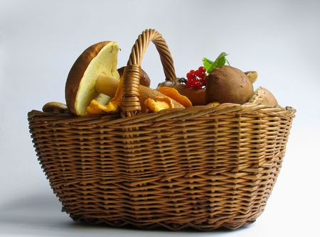 The gifts of nature: Basket full of mushrooms Stock Photo - 416656