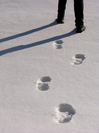 piernas hombre: Hombre piernas con las huellas en la nieve