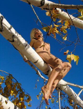 Blonde girl on the birch tree photo