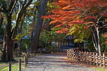 japanese tea garden: Autumn view on japanese tea house and garden