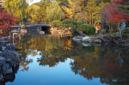 summer japanese landscape with pond and trees Stock Photo - 5714739