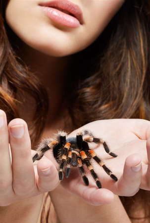 close-up portrait of girl with brachypelma smithi spider. girls hands with spider in focus, face out of focus. photo