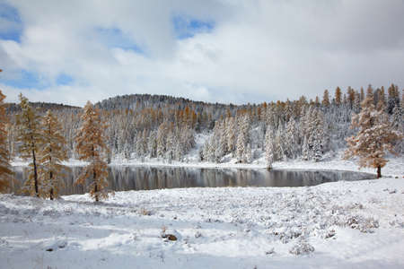 View on Altai mountines and forest under snow Stock Photo - 8400466