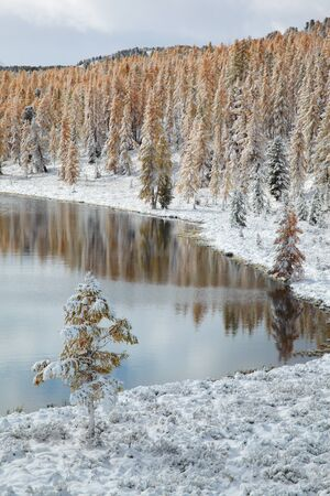 View on Altai mountines and forest under snow Stock Photo