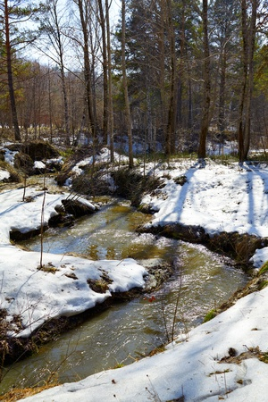 Small river in siberian forest at Spring time Stock Photo - 9461523