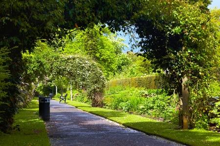 gardens: Alley in Belfast Botanic Gardens, Northern Ireland