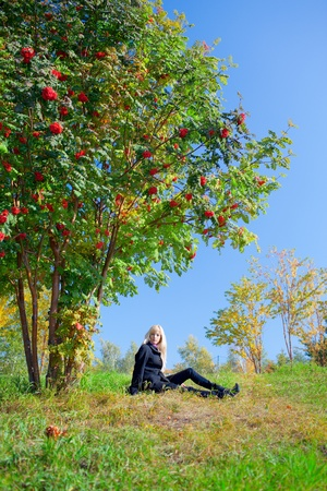 Beautiful young woman sits under the tree in autumn park under mountain ash tree photo