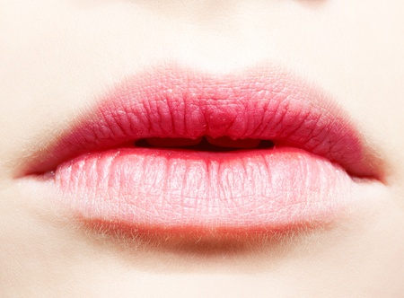 close-up body part portrait of beautiful womans lower part of face with healthy skin photo