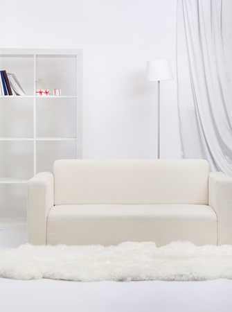interior indoor shot of apartment in tones of gray. sofa, shelf with books, lamp and white fur on floor Stock Photo - 12341790
