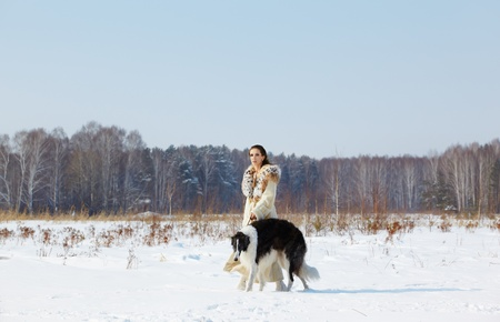 portrait of beautiful brunette woman with russian wolfhound in fur coat in snowy filed with winter forest on background Stock Photo - 13286928