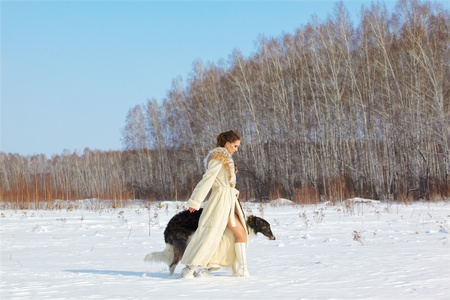 european white birch: outdoor portrait of beautiful brunette woman in fur coat with russian wolfhound in snowy filed with winter forest on background