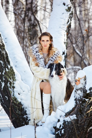 european white birch: outdoor portrait of beautiful brunette woman in fur coat with russian wolfhound in snowy winter forest