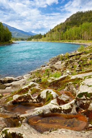 Amazing Mountain Altai landscape with river Katun Stock Photo - 15333007