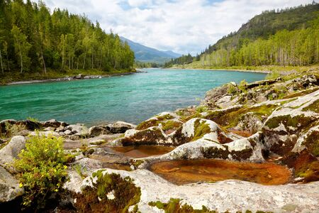 Amazing Mountain Altai landscape with river Katun photo