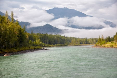 Amazing Altai landscape with river Katun and morning fog over mountains photo