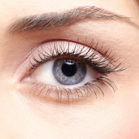 pretty eyes: Closeup shot of woman eye with day makeup
