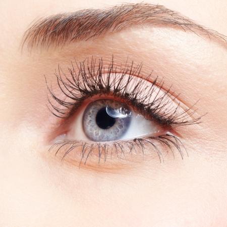 sch�ne augen: Closeup Schuss von Frau Auge mit Make-up-Tag