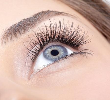 ojos hermosos: Primer tirado de ojo de la mujer con maquillaje de día