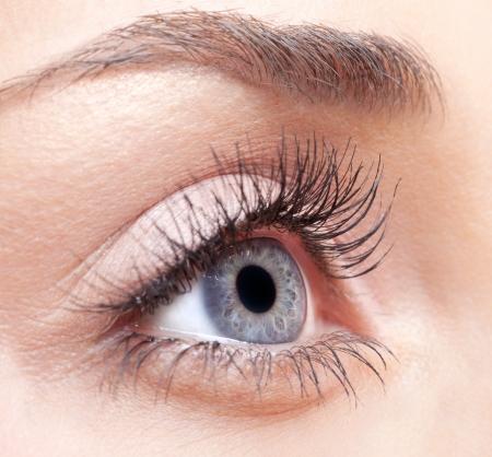 Closeup shot of woman eye with day makeup